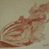 disegni-004_web
