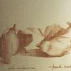 disegni-009_web